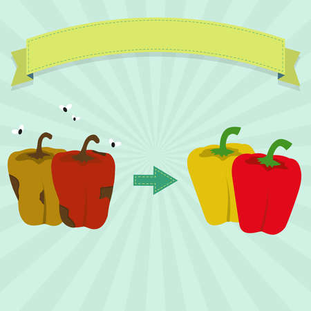 New Bell Pepper and rotten Bell Pepper with flies. Blank ribbon for insert text.