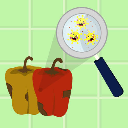 Bell pepper contaminated with cartoon microbes being cleaned and washed in a kitchen. Microorganisms, virus and bacteria in the vegetable enlarged by a magnifying glass. Running tap water. Angry microbes cartoon.