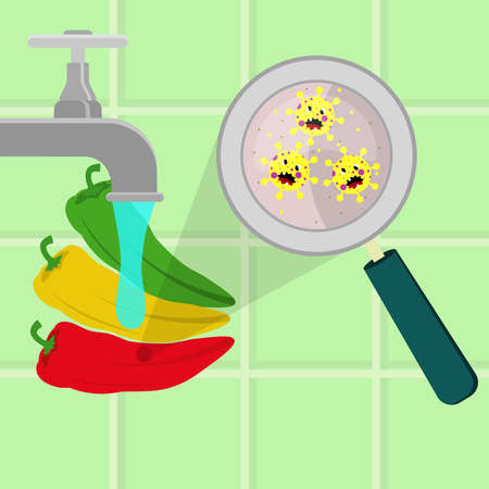 Chilli pepper contaminated with cartoon microbes being cleaned and washed in a kitchen. Microorganisms, virus and bacteria in the vegetable enlarged by a magnifying glass. Running tap water. Angry microbes cartoon. Иллюстрация