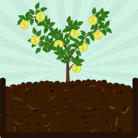 Münzbaum pflanzen. Kompostierungsprozess mit organischem Material, Mikroorganismen und Regenwürmern. Abgefallene Blätter auf dem Boden. Konzeptionell