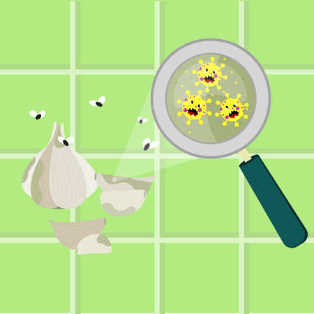 Garlic bulb contaminated with cartoon microbes. Microorganisms, virus and bacteria in the vegetable enlarged by a magnifying glass. Angry microbes cartoon.
