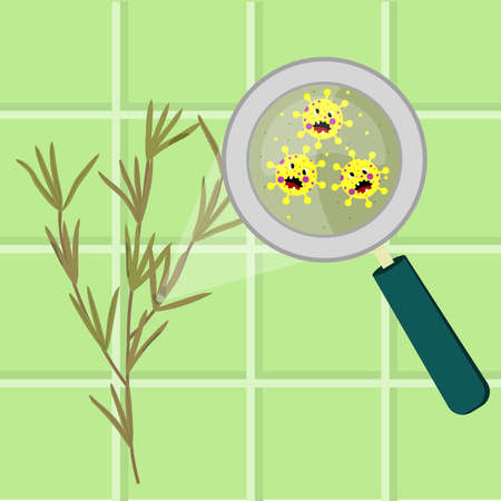 Rosemary branch contaminated with cartoon microbes. Microorganisms, virus and bacteria in the vegetable enlarged by a magnifying glass. Angry microbes cartoon. Иллюстрация