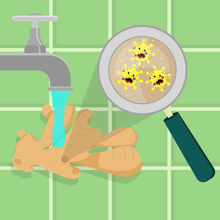 Garlic contaminated with cartoon microbes being cleaned and washed in a kitchen. Microorganisms, virus and bacteria in the vegetable enlarged by a magnifying glass. Running tap water. Angry microbes cartoon.