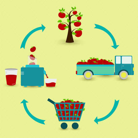 Tomato juice production steps. Tomato tree, harvest, transport, sale at the grocery store, production of tomato juice at home. In a circular scheme.