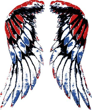 bird wing illustration Vector