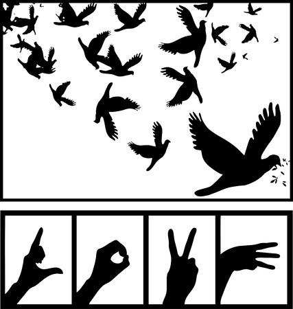 paloma de la paz: Paloma de la paz s�mbolo de amor silueta de la mano Vectores