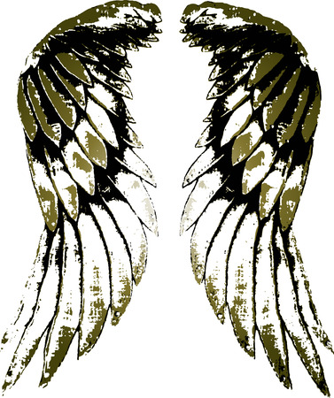 falcons: tribal bird wing illustration