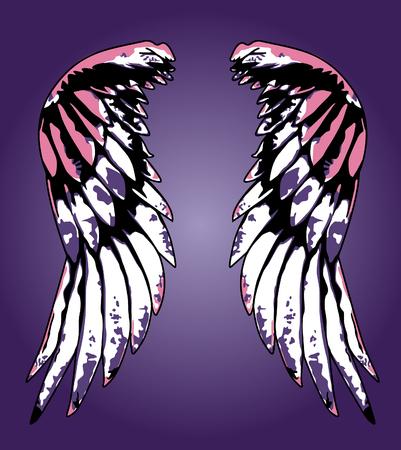 fancy eagle wing portrait illustration Stock Vector - 5433754