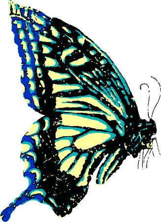 butterflies nectar: flying butterfly Illustration