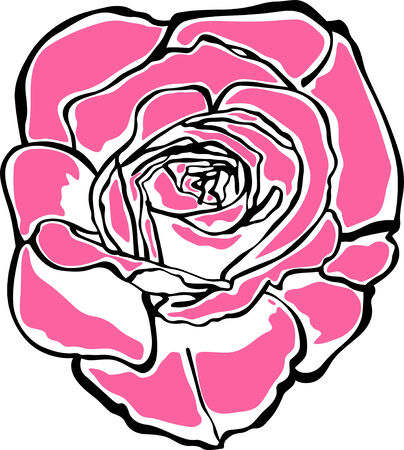 rose portrait  Vector
