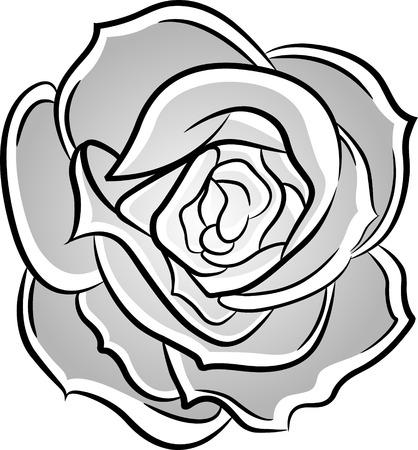 botany woman: rose illustration