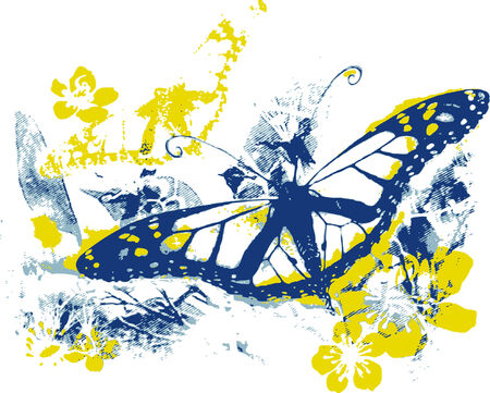 butterfly in the nature Vector