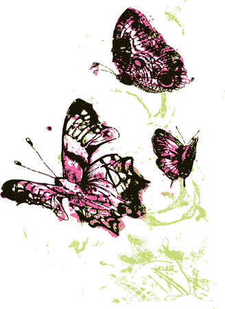 colourful and beautiful butterfly Vector