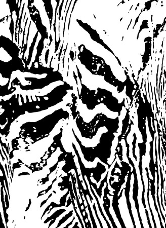 brushstrokes: zebra abstract print Illustration