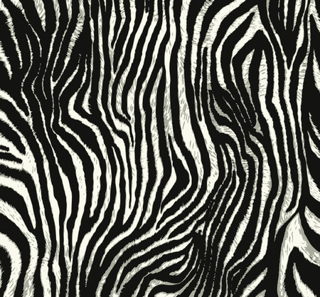 a print: animal print Illustration
