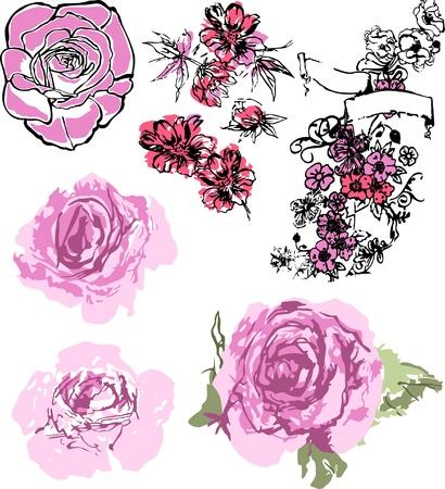 pink rose set Vector