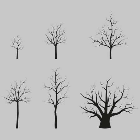 bareness: Set of vector trees black silhouettes without leaves Illustration