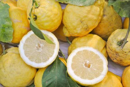 sorrento: Sorrento lemons