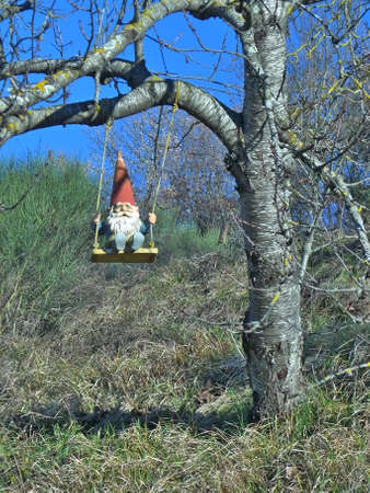 Old bearded garden gnome with a pointed red hat on a swing