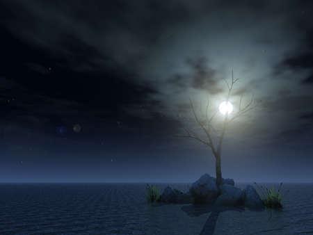 dead sea: dead tree at night - 3d illustration