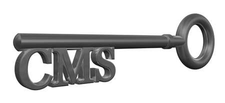 cms: metal key with cms tag - 3d illustration
