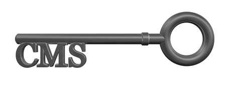metal key with cms tag - 3d illustration illustration