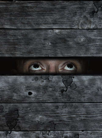 locked up: anxious eyes behind old wooden planks wound Stock Photo