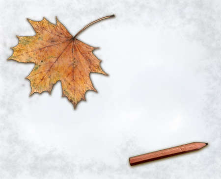 maple leaf and pencil