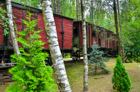 Old rusty train wagon in the forest as tourist attraction
