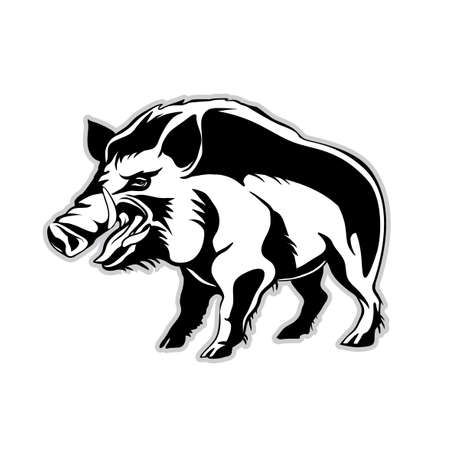 Vector drawing silhouette of a wild boar, a wild pig with an angry face with crutches Çizim