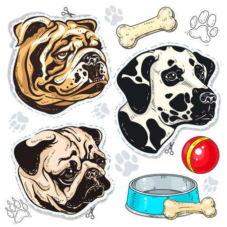 Vector icons colored dog, bulldog, pug, Dalmatian and a bowl of bone