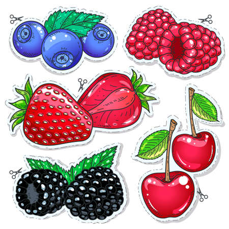 Vector illustration, icons colored dietary dessert. Set berries. Strawberries, raspberries, blueberries, blackberries and cherries isolated on white background Ilustração