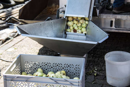Fruit press for apple juice extraction
