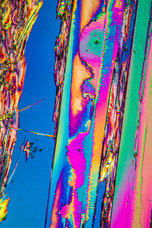 Urea crystals in polarized light under the microscope