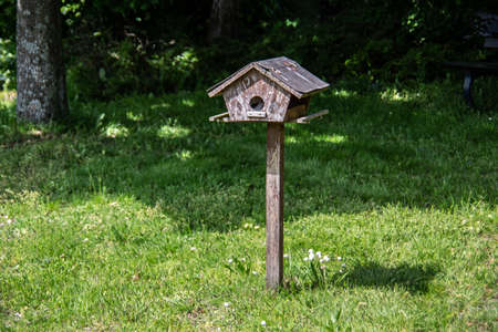 Bird house in meadow on stand