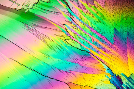 Urea crystals in polarized light under the microscope 100x