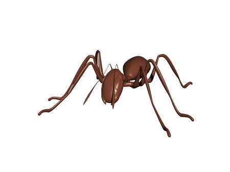 brown ant with compound eyes crawl around
