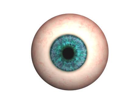 Eyeball with lens and iris
