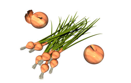 Onions and chives in the kitchen