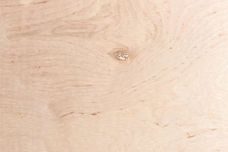 Texture of wood background closeup textspace