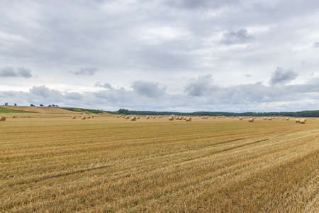 Straw bales on farmland background 스톡 콘텐츠