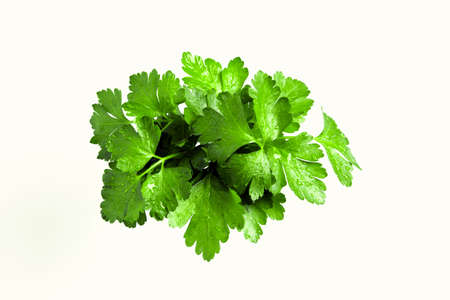 Sprig of Parsley