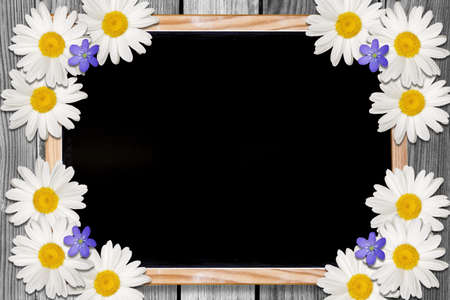Blackboard and flowers background with empty space for your text