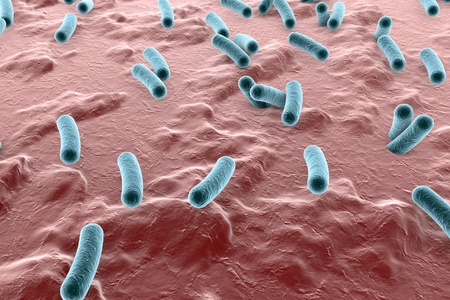 escherichia: Bacteria on surface of skin, mucous membrane or intestine, model of Escherichia coli, Salmonella, Klebsiella, Legionella, Mycobacterium tuberculosis, model of microbes, simulating electron microscope