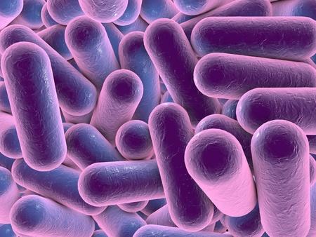 bacterias: Dibujo tridimensional de la bacteria en forma de bast�n, el modelo de las bacterias, ilustraci�n realista de los microbios, los microorganismos, Escherichia coli, Klebsiella, Salmonella, Clostridium Foto de archivo