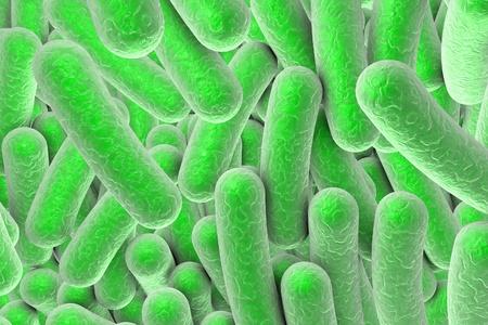 escherichia: Microscopic illustration of bacteria, model of bacteria, realistic illustration of microbes, Escherichia coli, Klebsiella, Salmonella, Clostridium, Pseudomonas, Mycobacterium, Shigella, Legionella Stock Photo