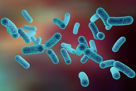 salmonella: Microscopic illustration of bacteria, model of bacteria, realistic illustration of microbes, Escherichia coli, Klebsiella, Salmonella, Clostridium, Pseudomonas, Mycobacterium, Shigella, Legionella Stock Photo