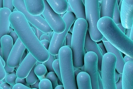 Digital illustration of bacteria, model of bacteria, realistic illustration of microbes, Escherichia coli, Klebsiella, Salmonella, Clostridium, Pseudomonas aeruginosa, Shigella, Legionella Stock Photo