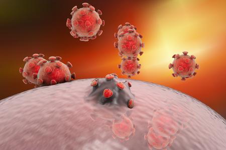 celula animal: La liberaci�n de los virus de c�lula humana o animal. Virus MERS, el VIH, influenza, hepatitis A, hepatitis B, virus de la hepatitis C. Antecedentes cient�ficos