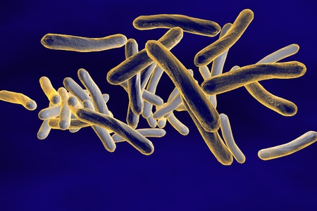 Three-dimensional drawing of Mycobacterium tuberculosis, Escherichia coli, Salmonella, Enterobacter, Citrobacter, Enterobacteriaceae, enteric bacteria, realistic illustration of microbes